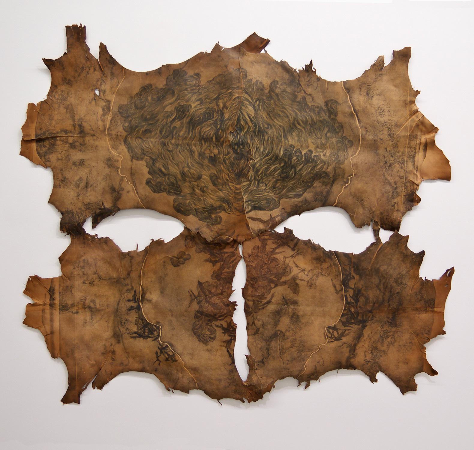 <i>évaporation nocturne</i>, 2011 - pointe sèche, ensemble de 6 plaques imprimées sur 4 peaux de chèvre assemblées, 130x150cm, épreuve unique