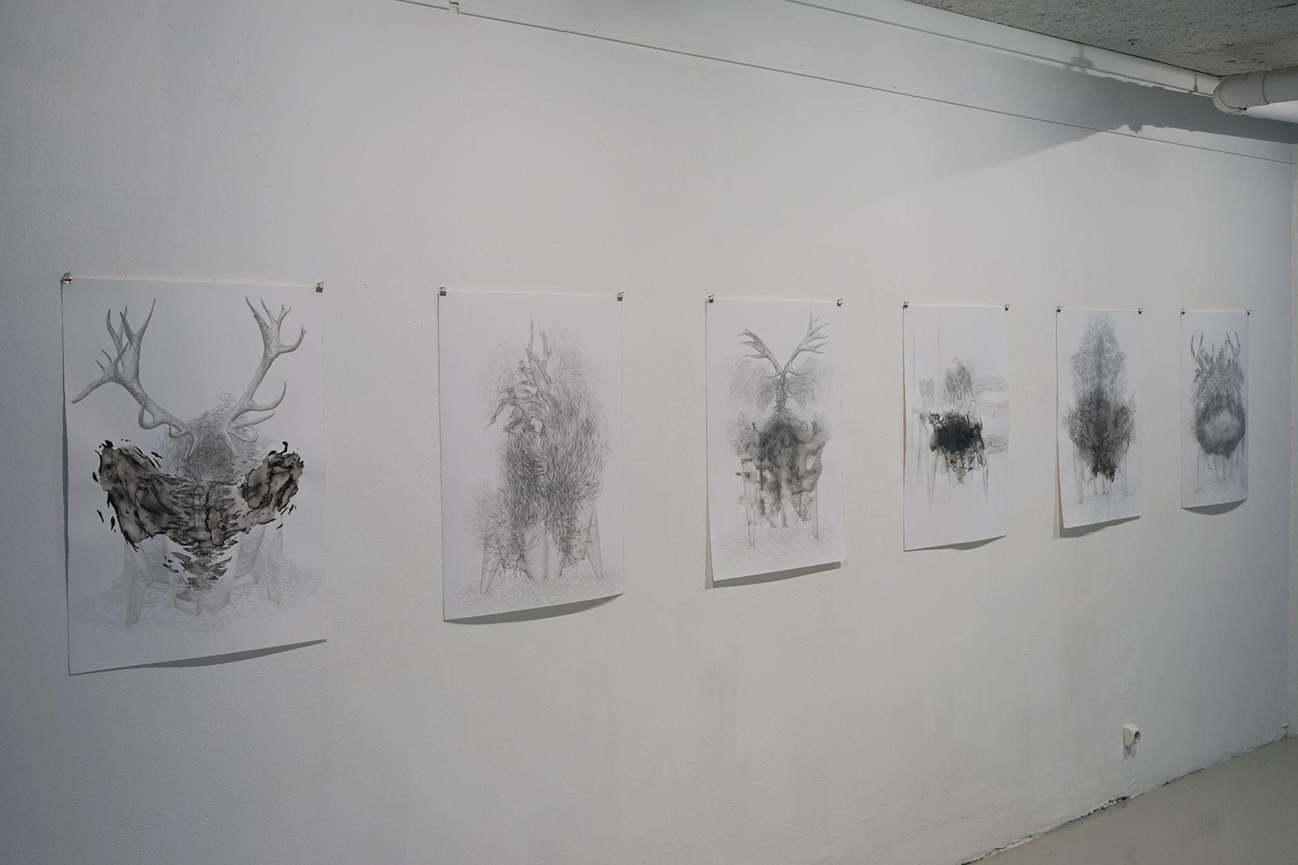 vue d'exposition <i>Sous l'ombre portée<i>, 2018