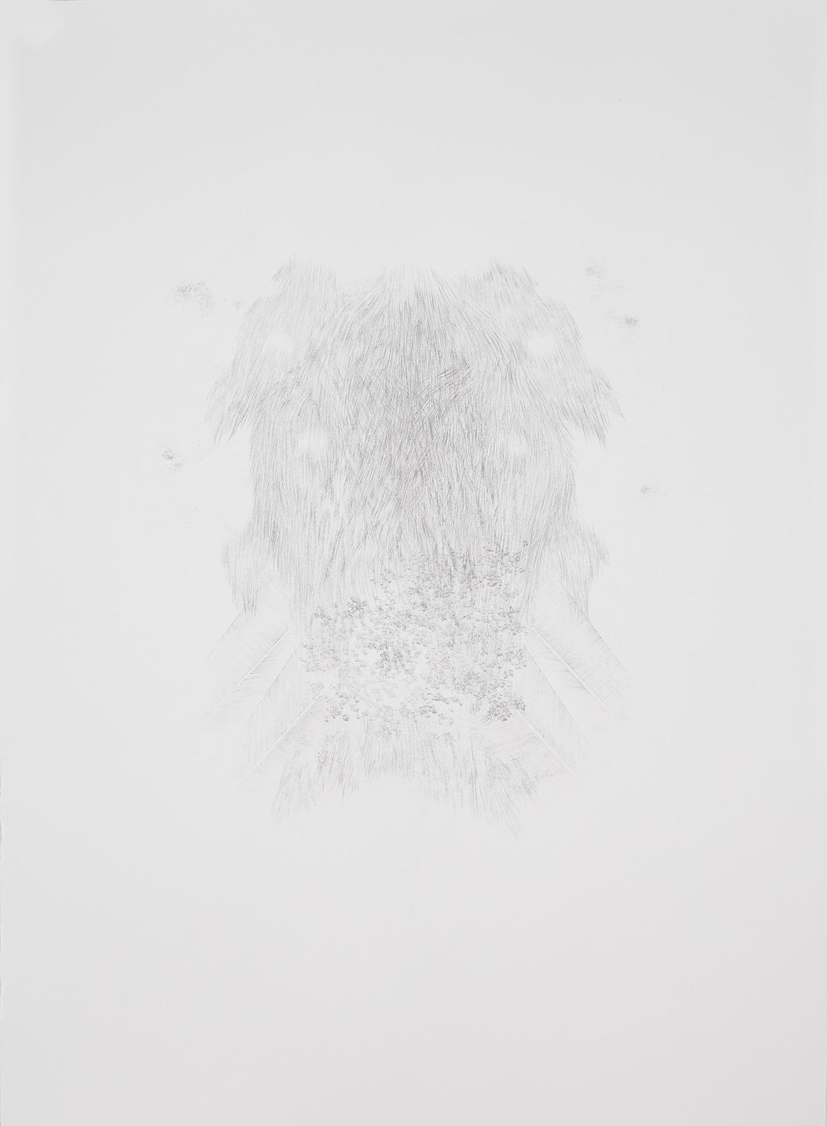 <i>Derrière les secrets (apparition)</i>, 2016, graphite, 80x60cm