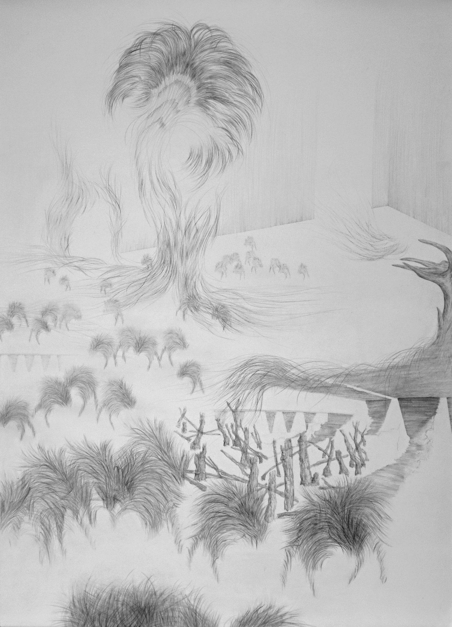 <i>au nord</i>, 2017, graphite, 101x70cm