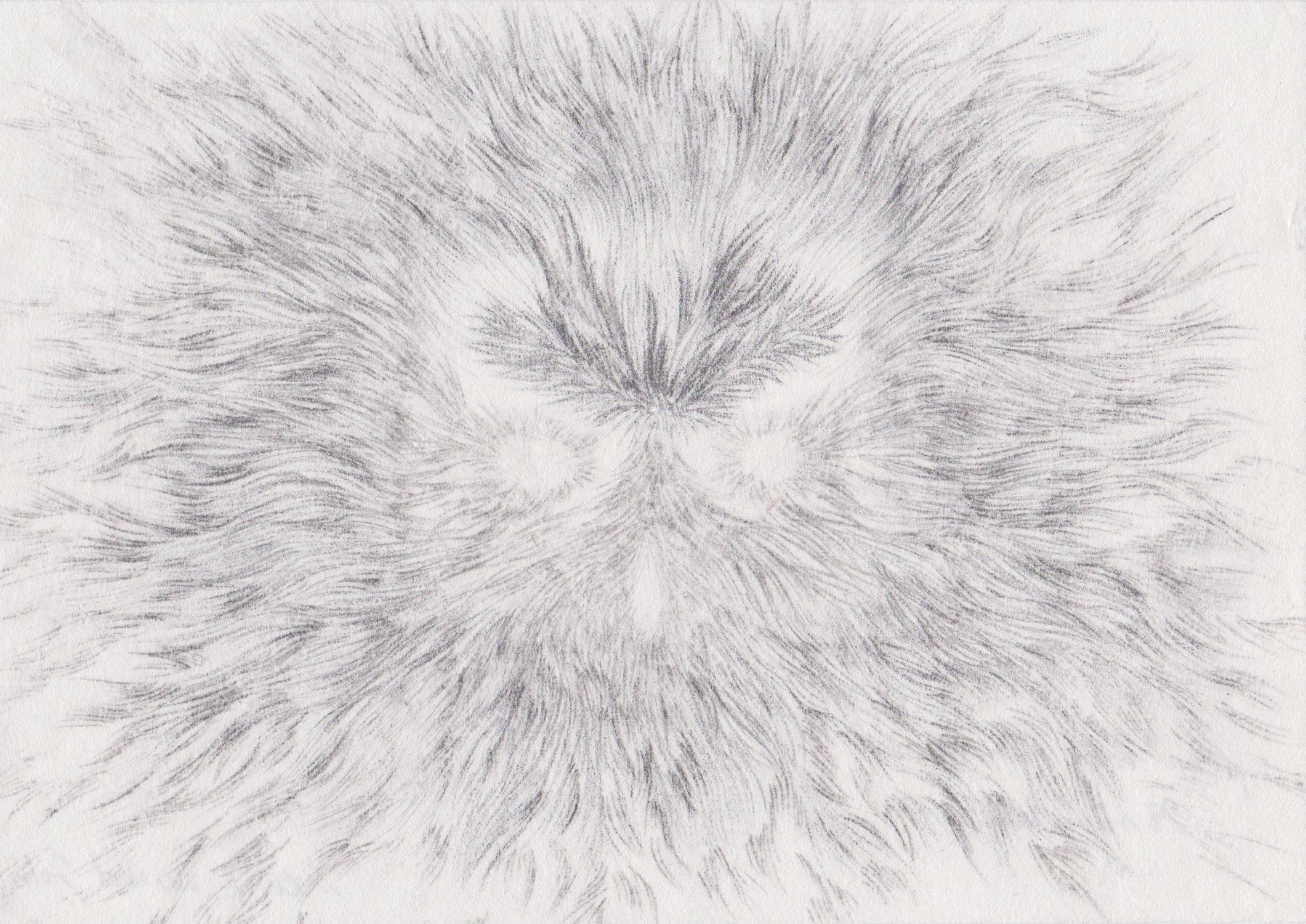 <i>sans titre</i>, 2016, graphite, 15x20,5cm