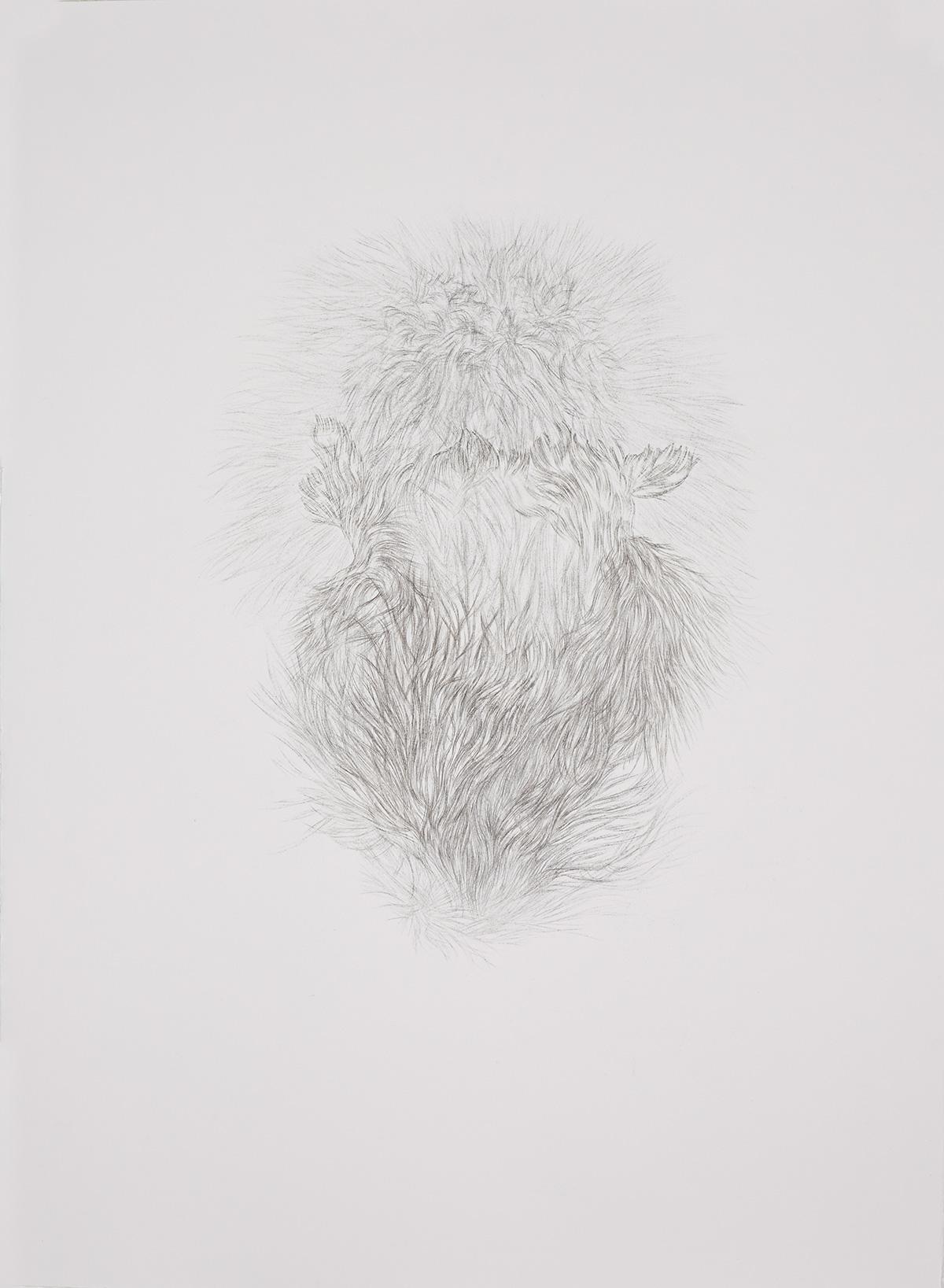 <i>Derrière les secrets (flair)</i>, 2016, graphite, 80x60cm