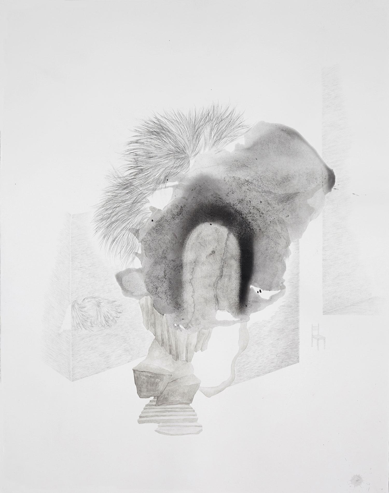 <i>interieur</i>, 2014, graphite et lavis, 70x56cm