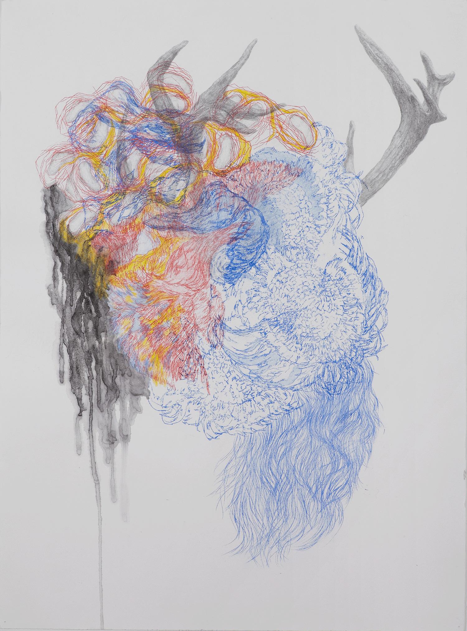 <i>Jeune fille aux bois</i>, 2013, graphite, crayon et lavis, 80x60cm