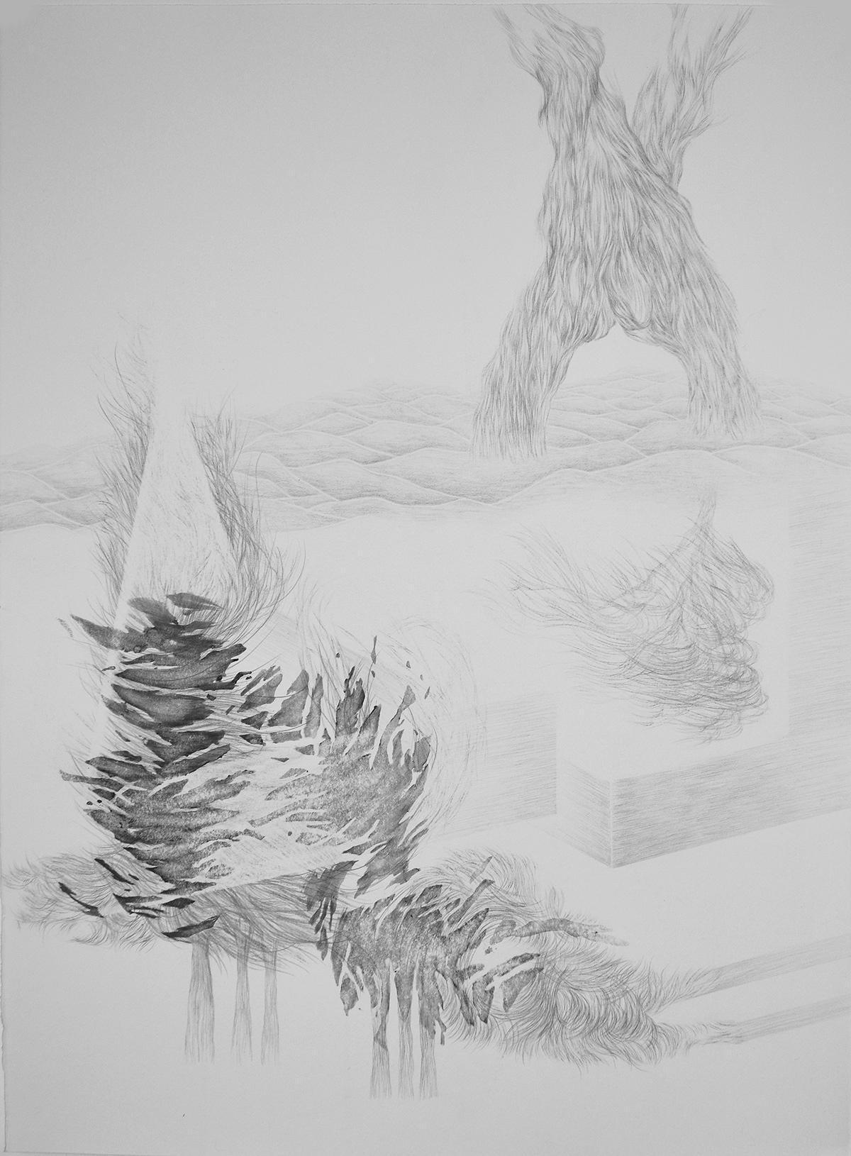 <i>La contrée</i>, 2015, graphite et lavis, 80x60cm