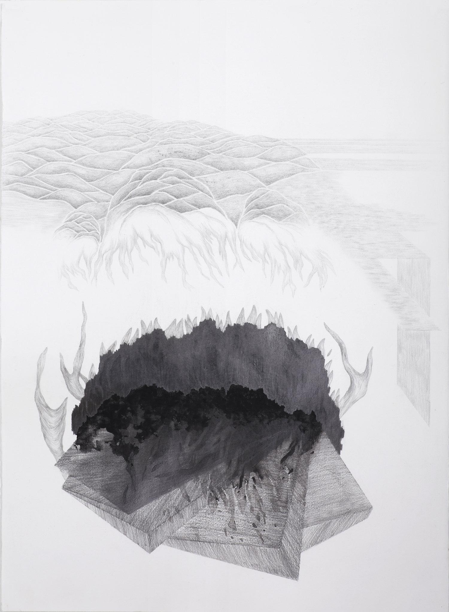 <i>la dune des bois</i>, 2014, graphite et gouache, 76x56cm