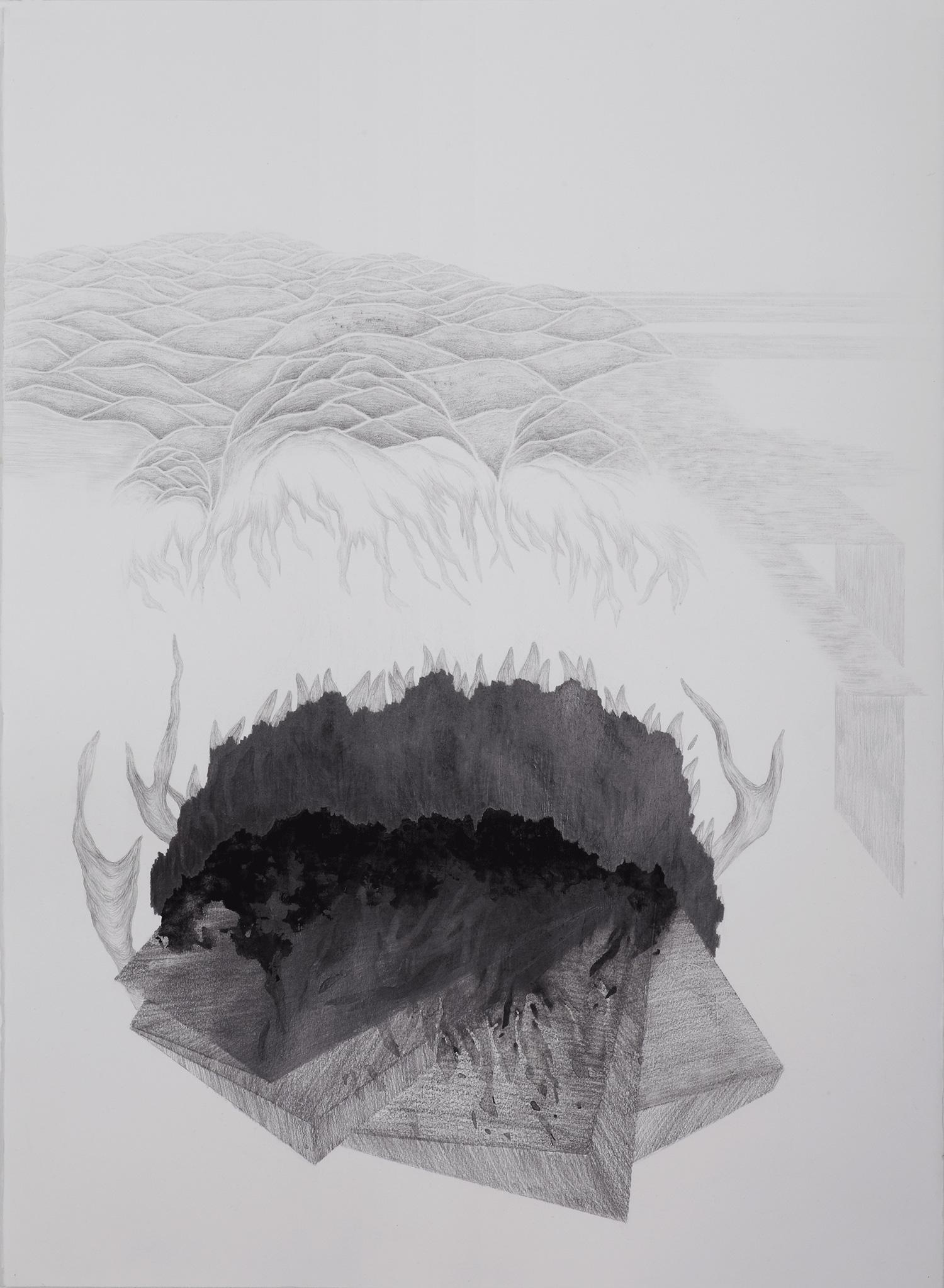 <i>La dune des bois</i>, 2014, graphite et gouache, 80x60cm