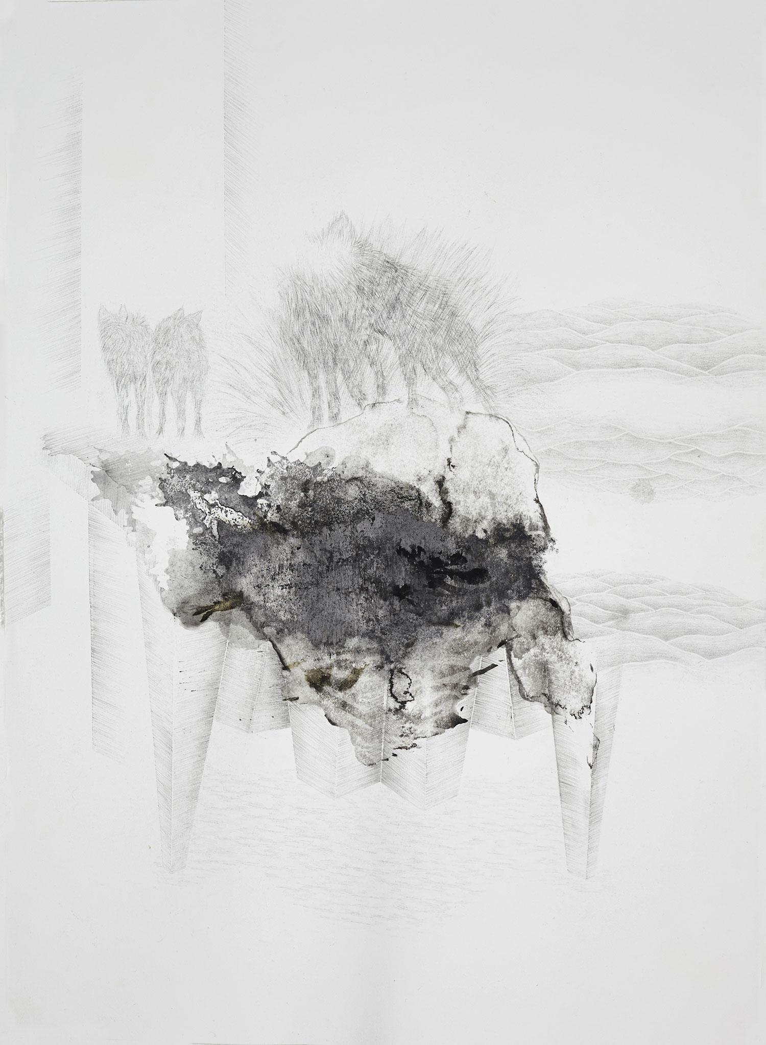<i>les instincts</i>, 2015, graphite et lavis, 76x56cm