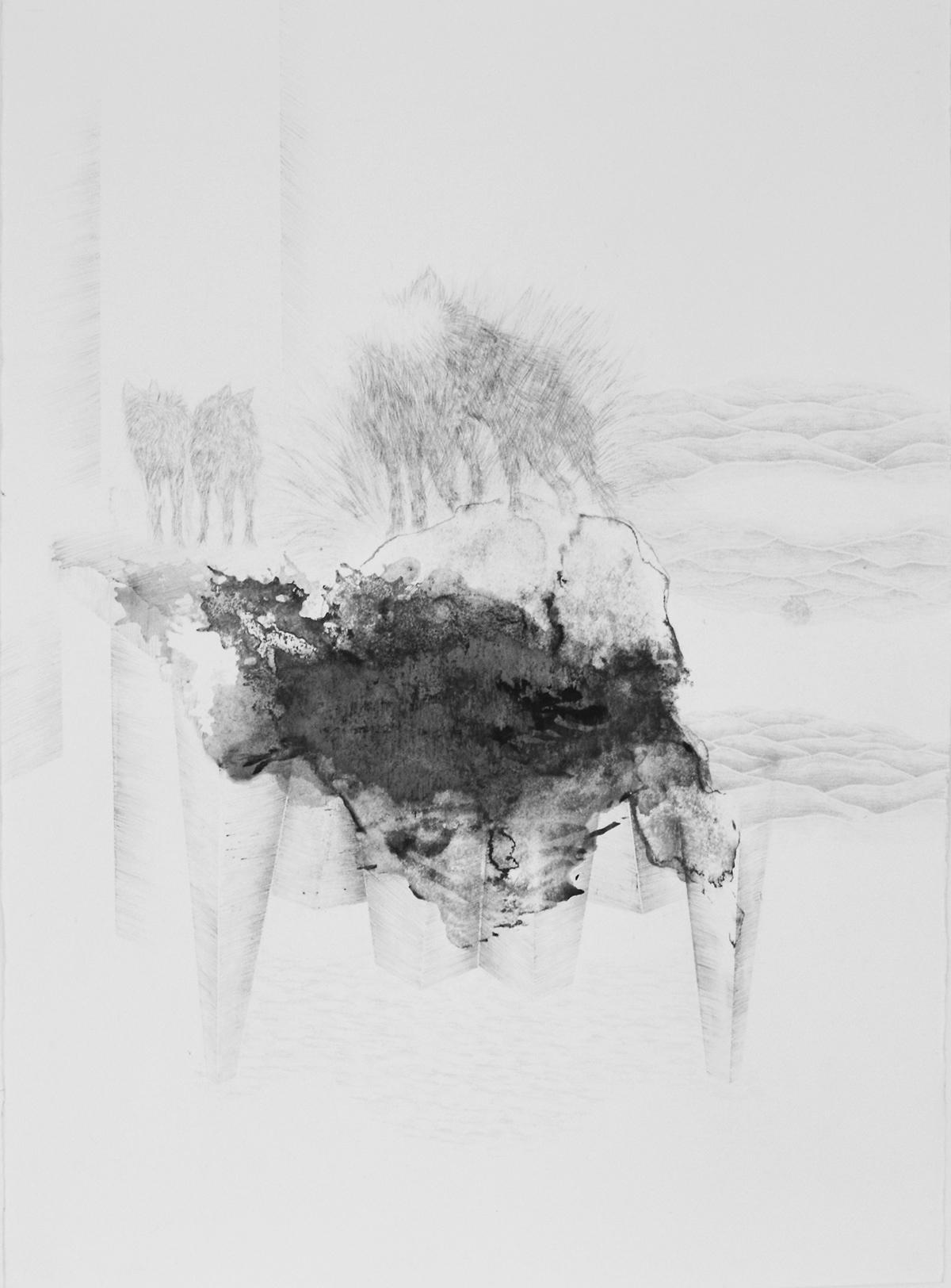 <i>Les instincts</i>, 2015, graphite et gouache, 80x60cm
