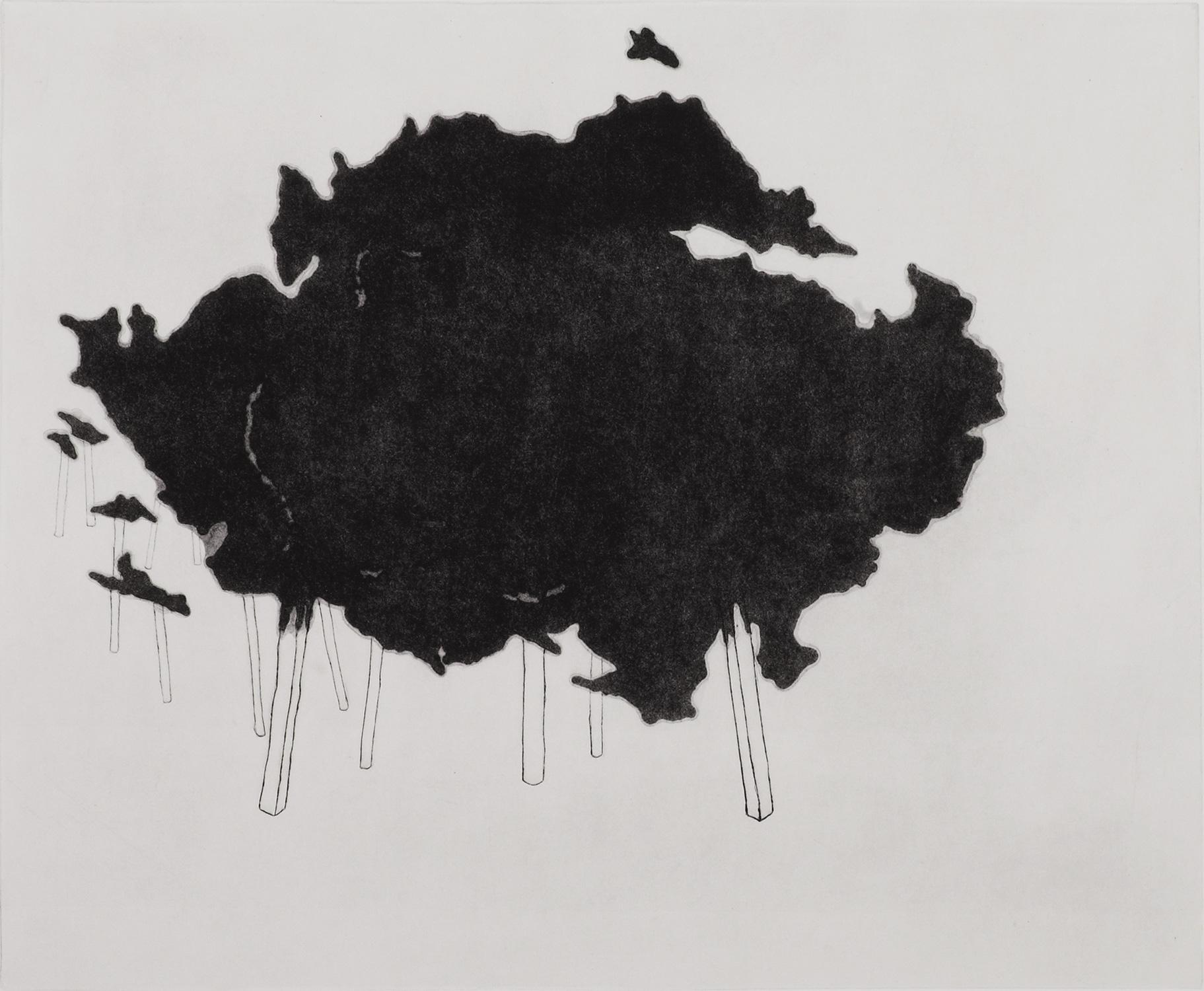 <i>sans titre</i>, 2009, fleur de soufre et pointe sèche, 65x80cm