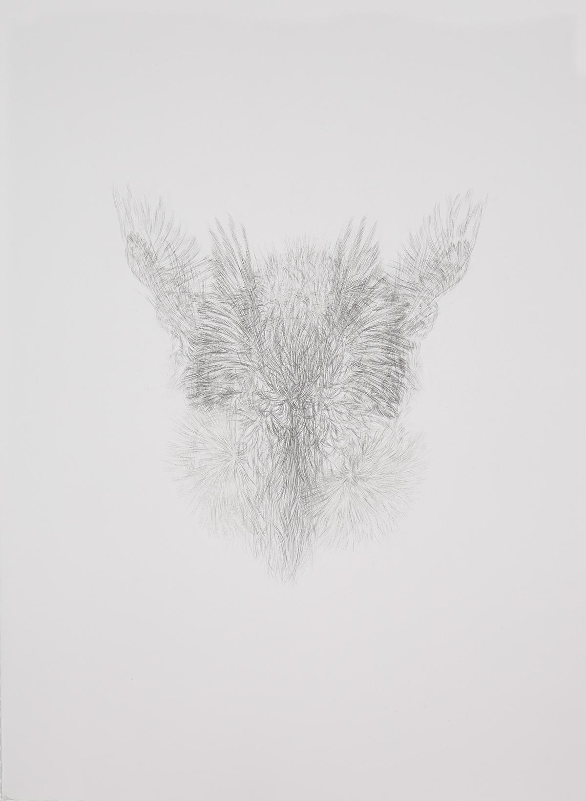 <i>Derrière les secrets (marabout)</i>, 2016, graphite, 80x60cm