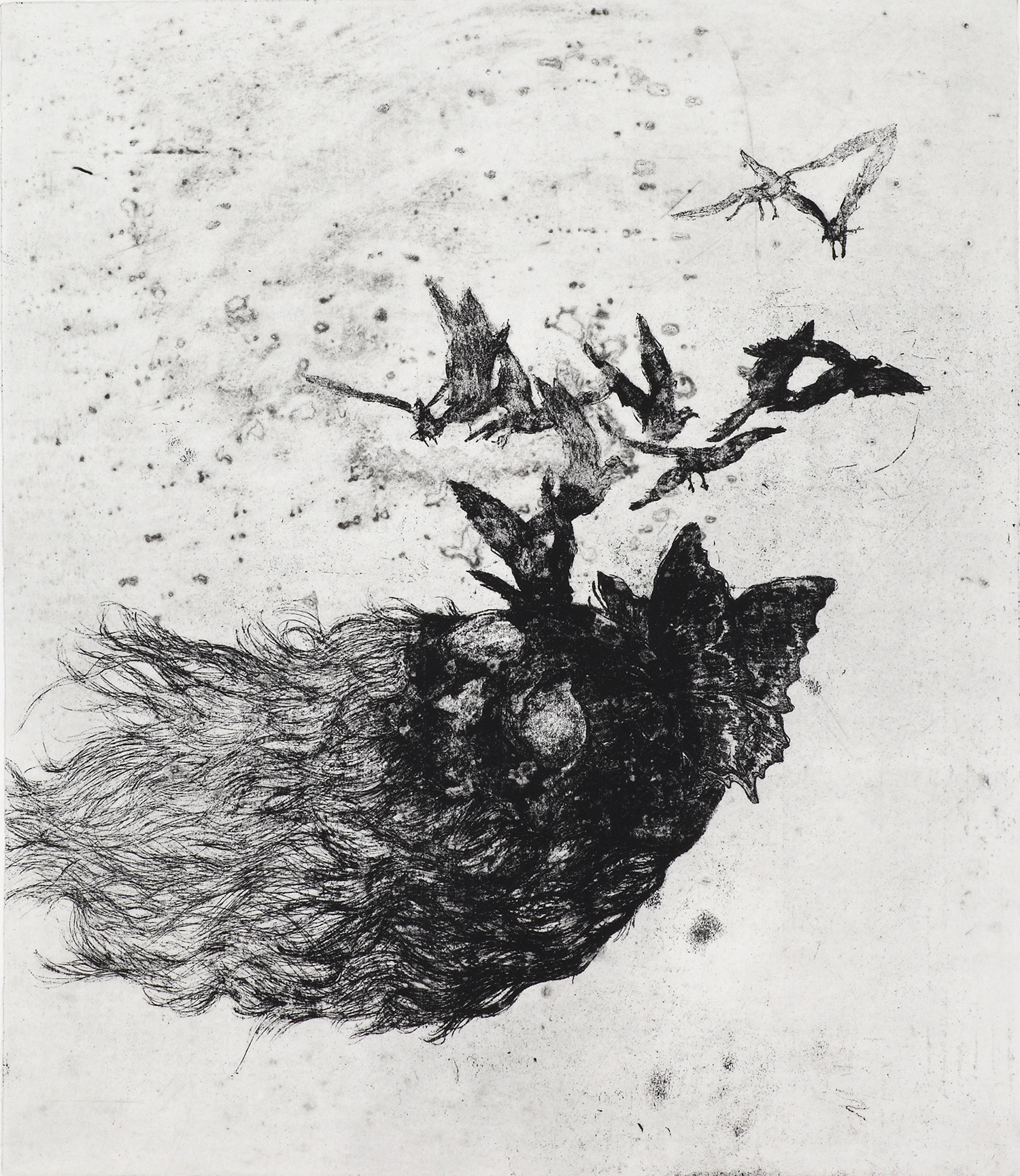 <i>nature chamane</i>, 2011, vernis mou et pointe sèche, 75x63cm