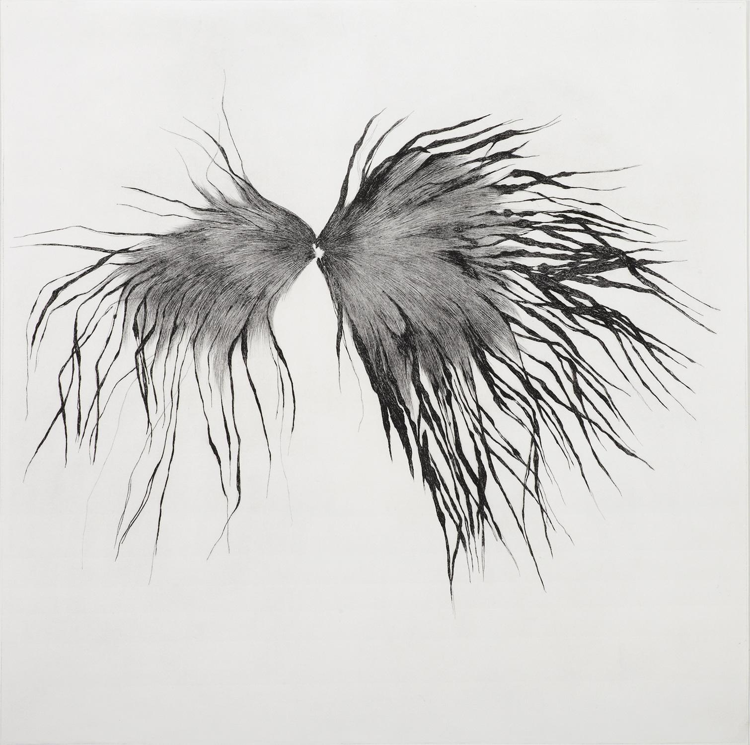 <i>oeil</i>, 2009, pointe sèche, 80x80cm