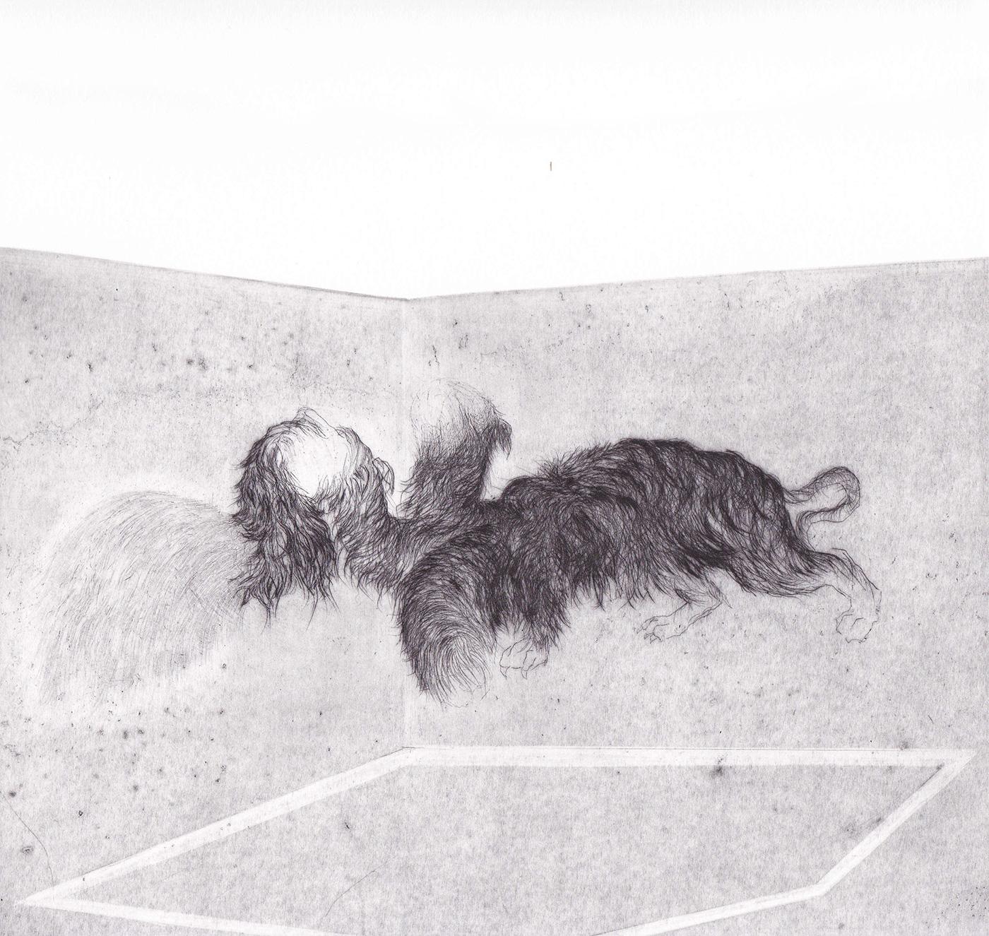 <i>ombre</i>, édition encrage, 2016 - gravure, pointe sèche