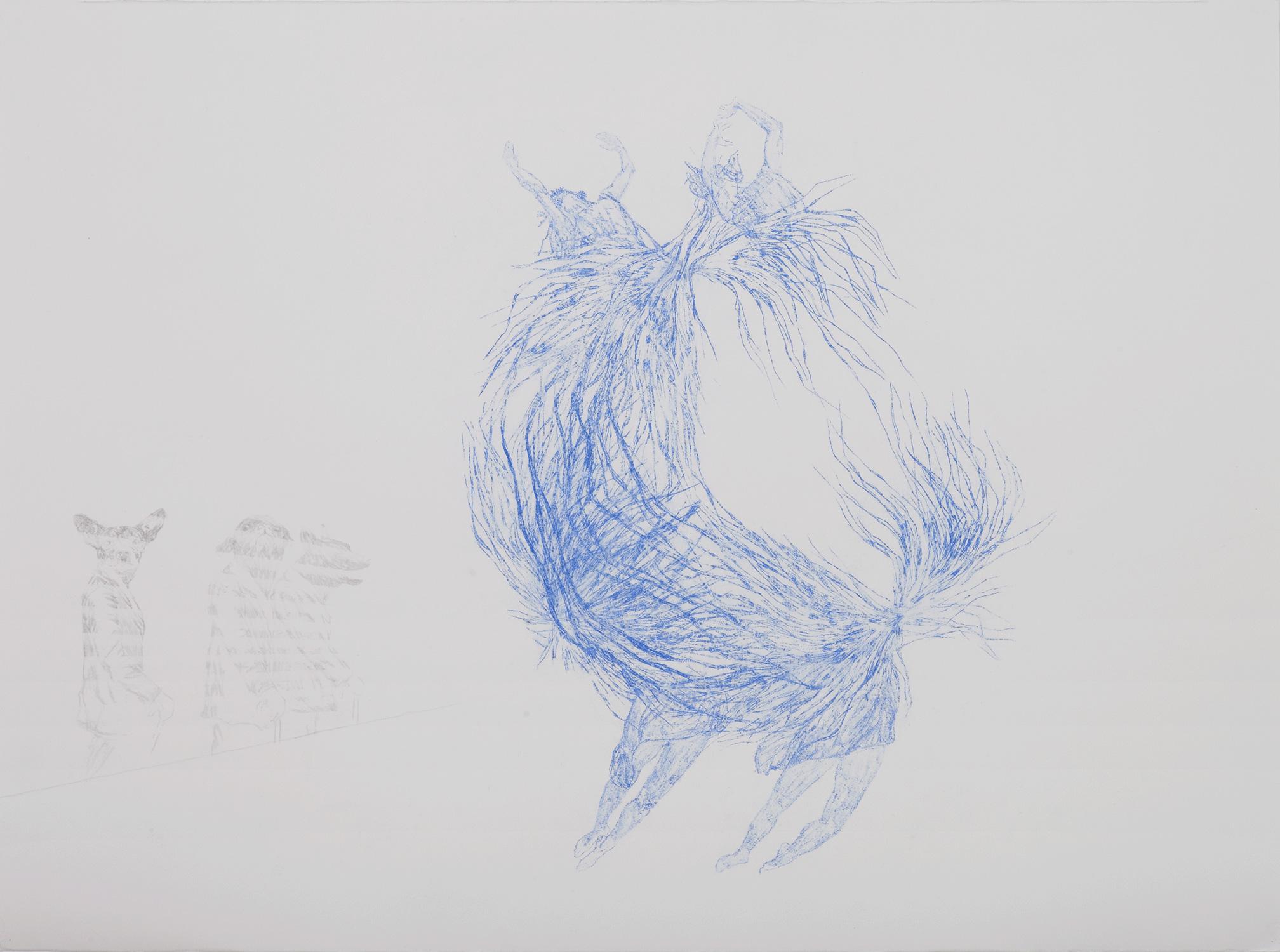 <i>Prétendants aux danseuses</i>, 2013, graphite et crayon, 60x80cm