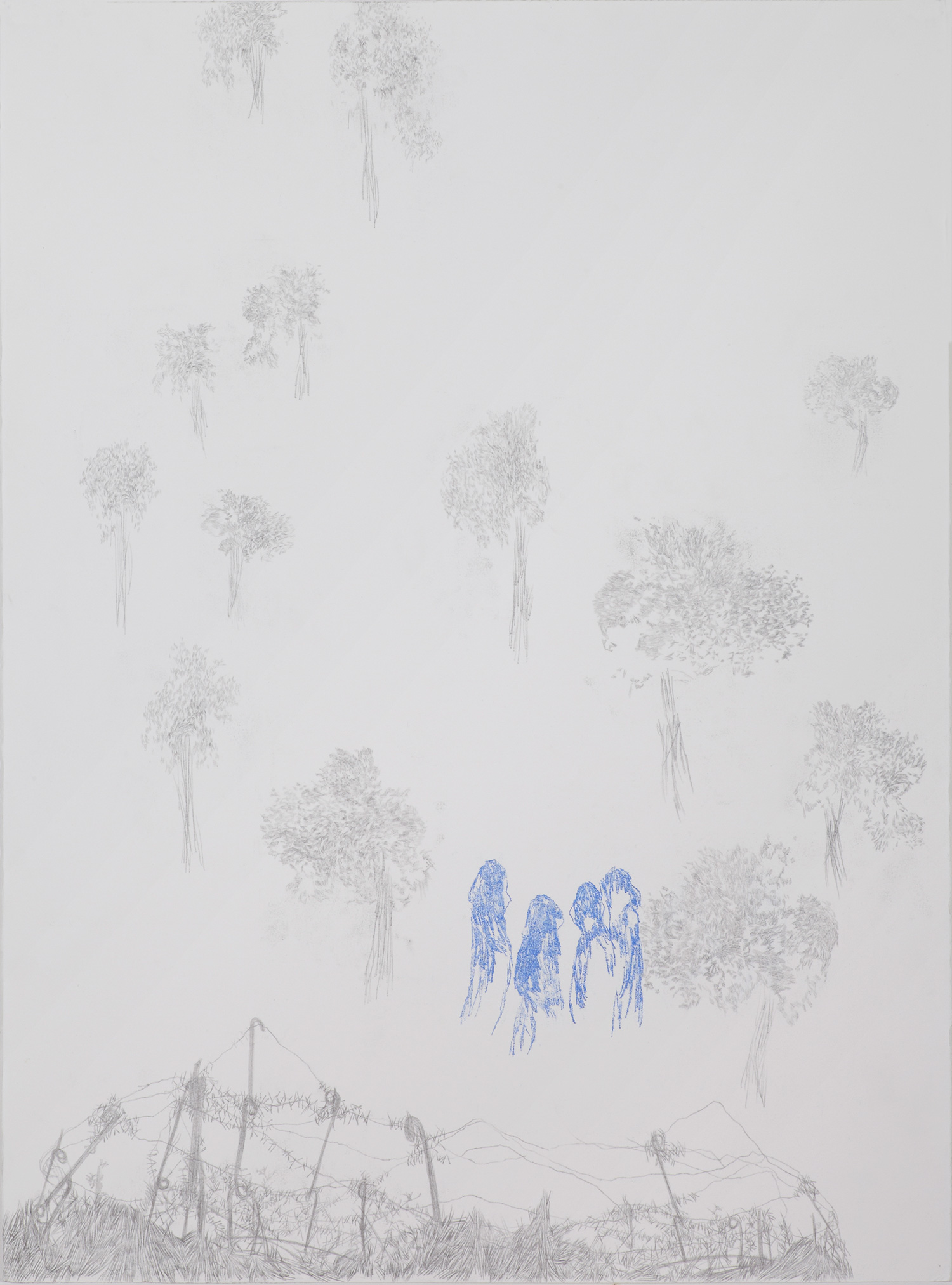 <i>Rituel</i>, 2013, graphite et crayon, 80x60cm