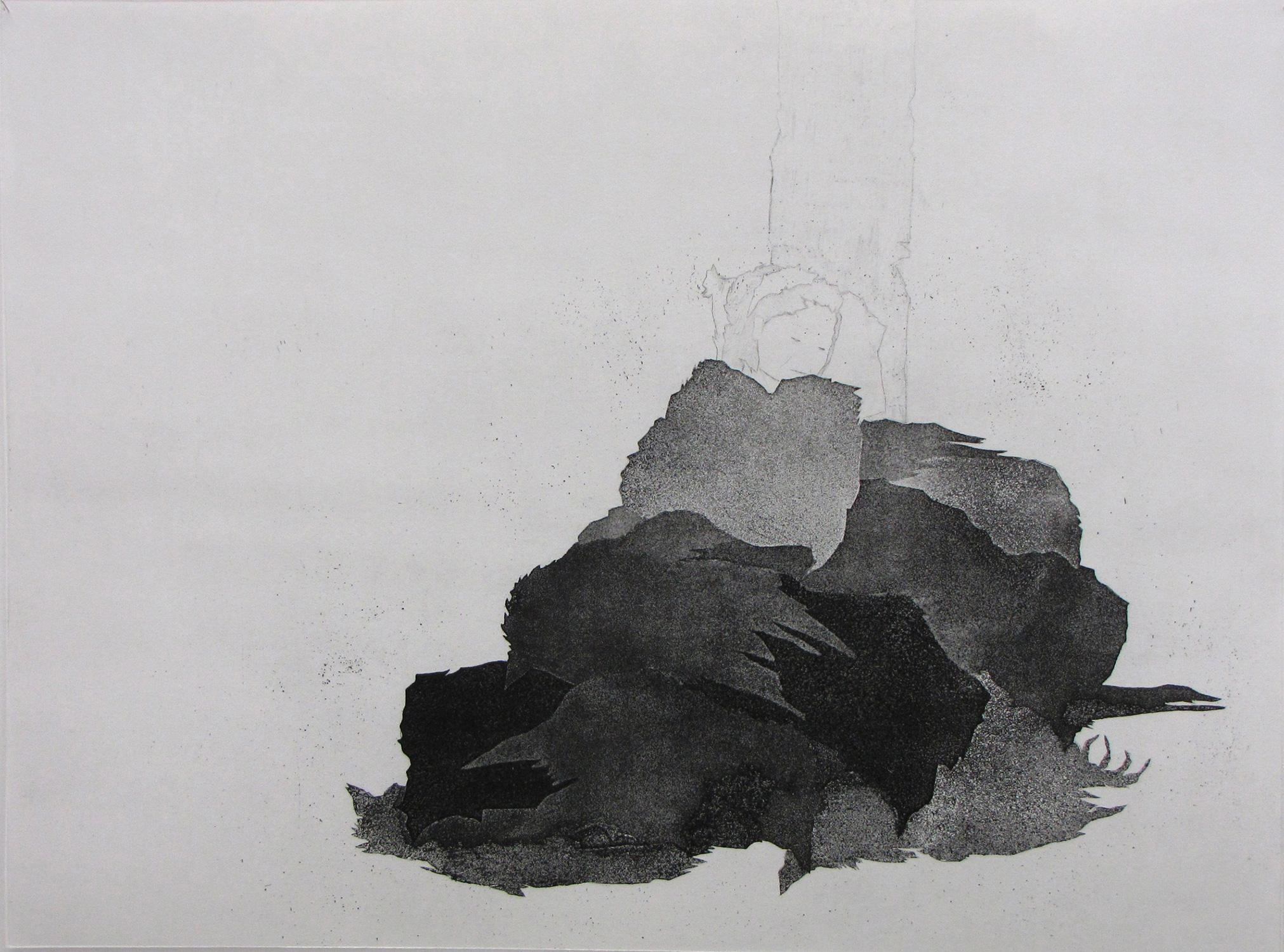 <i>Couverture d'oiseaux</i>, 2008, 65x80cm