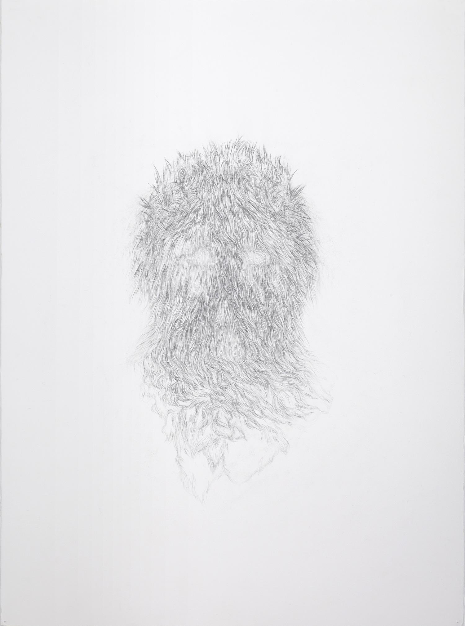 <i>derrière les secrets</i>, 2013, graphite, 76x56cm