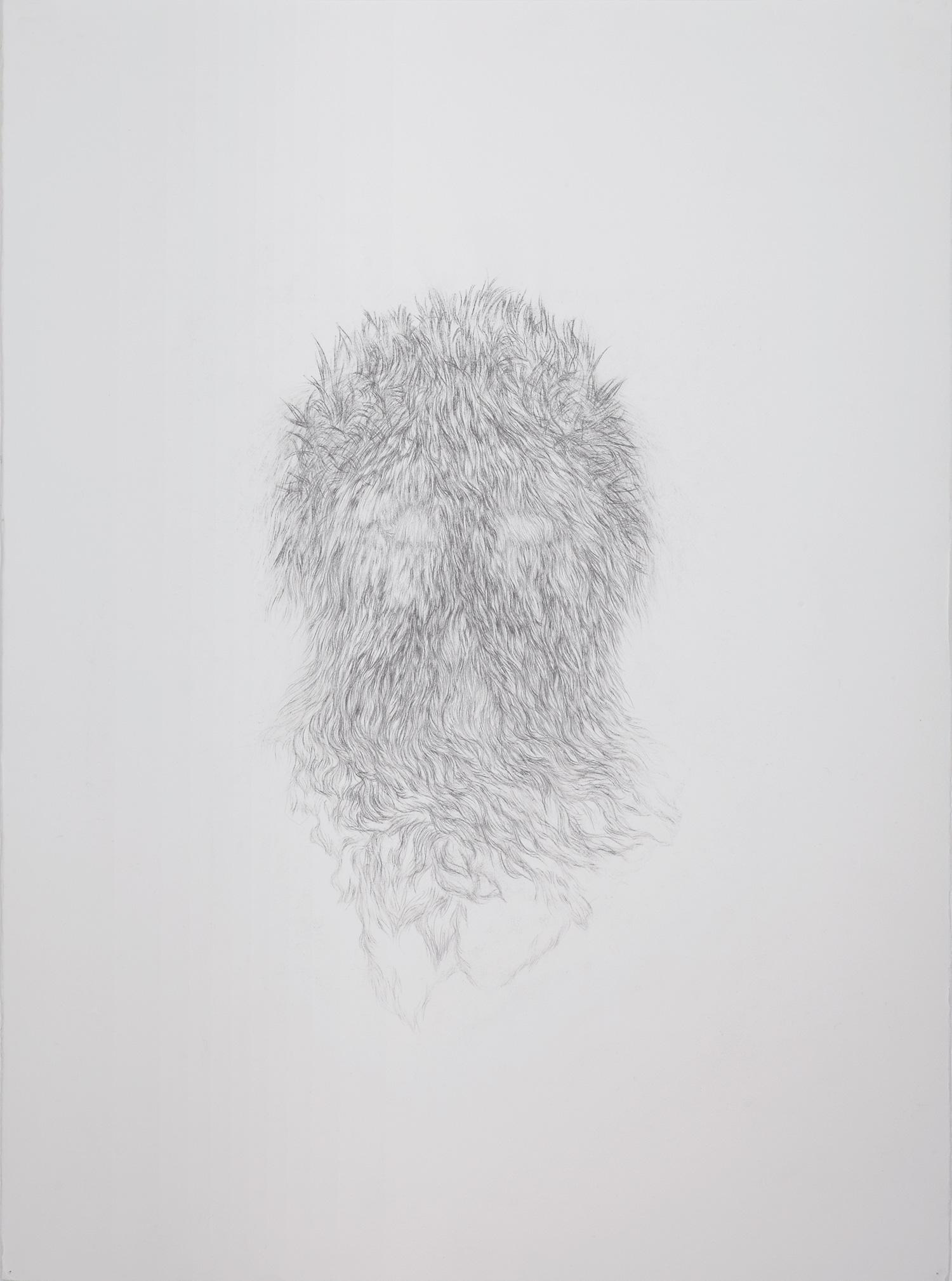 <i>Derrière les secrets (sauvage)</i>, 2013, graphite, 80x60cm