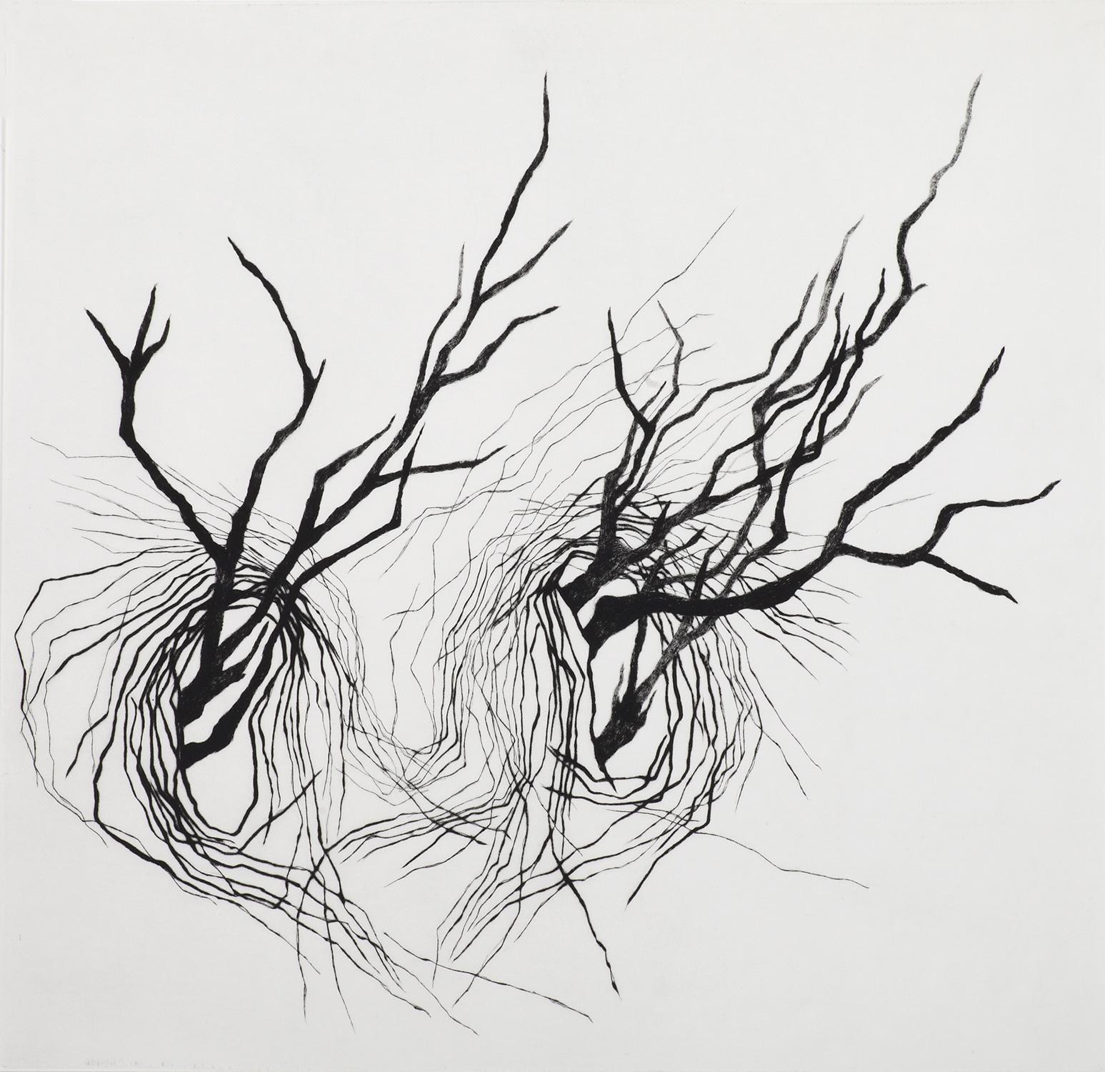 <i>sans titre</i>, 2009, pointe sèche, 70x70cm