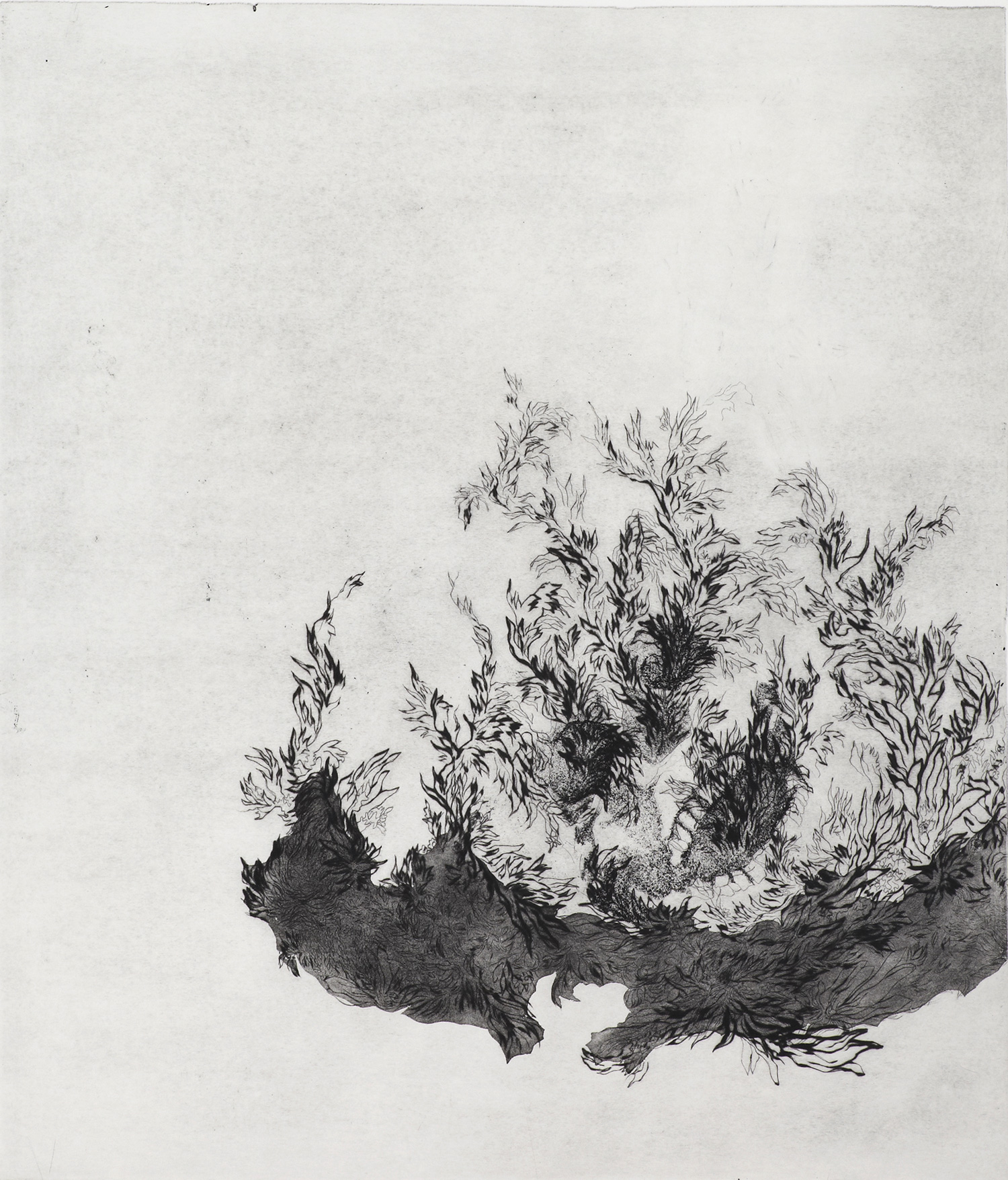 <i>sans titre</i>, 2011, pointe sèche, vernis mou et aquatinte, 75x63cm