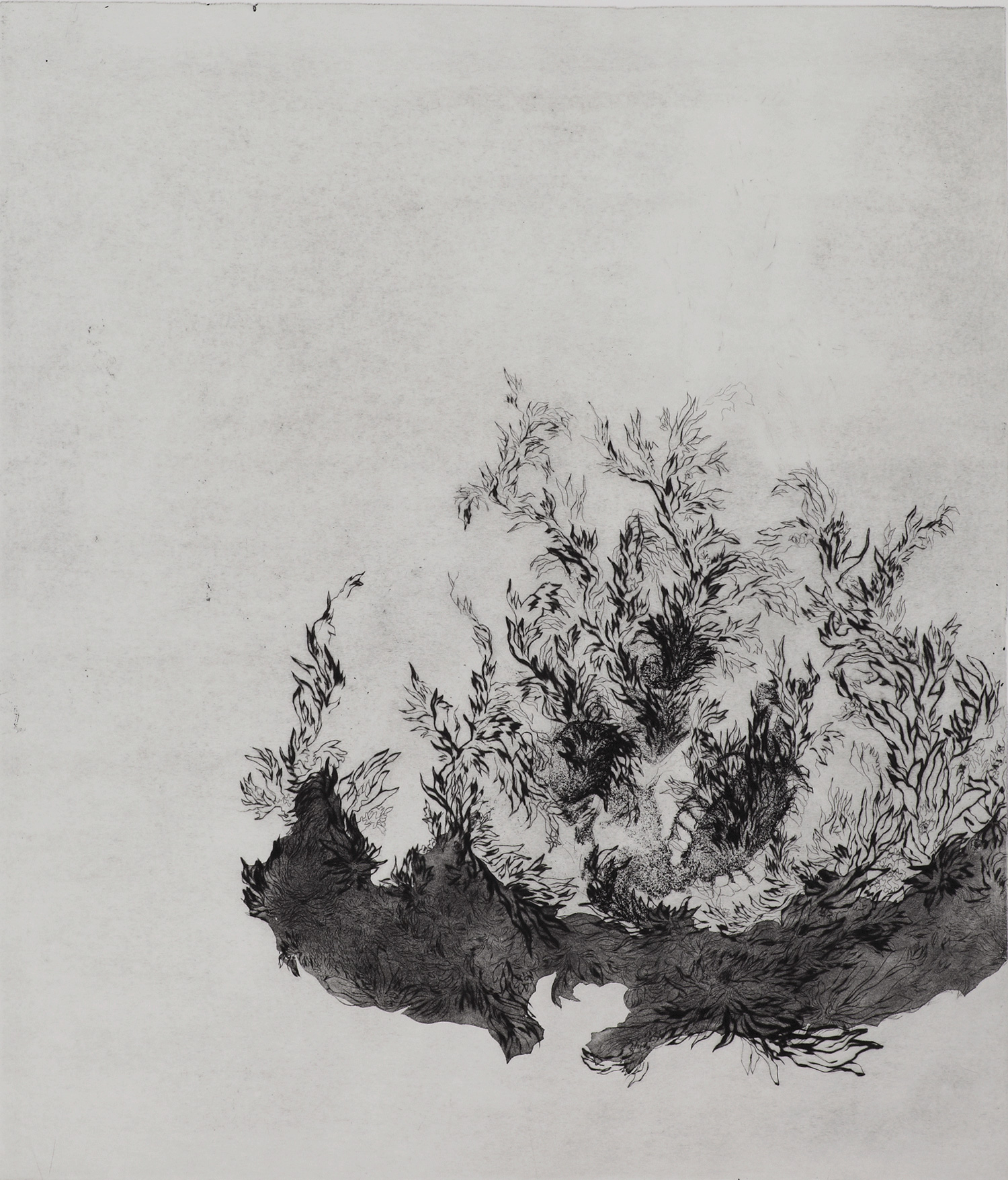 <i>Sans titre</i>, 2011, 75x63cm