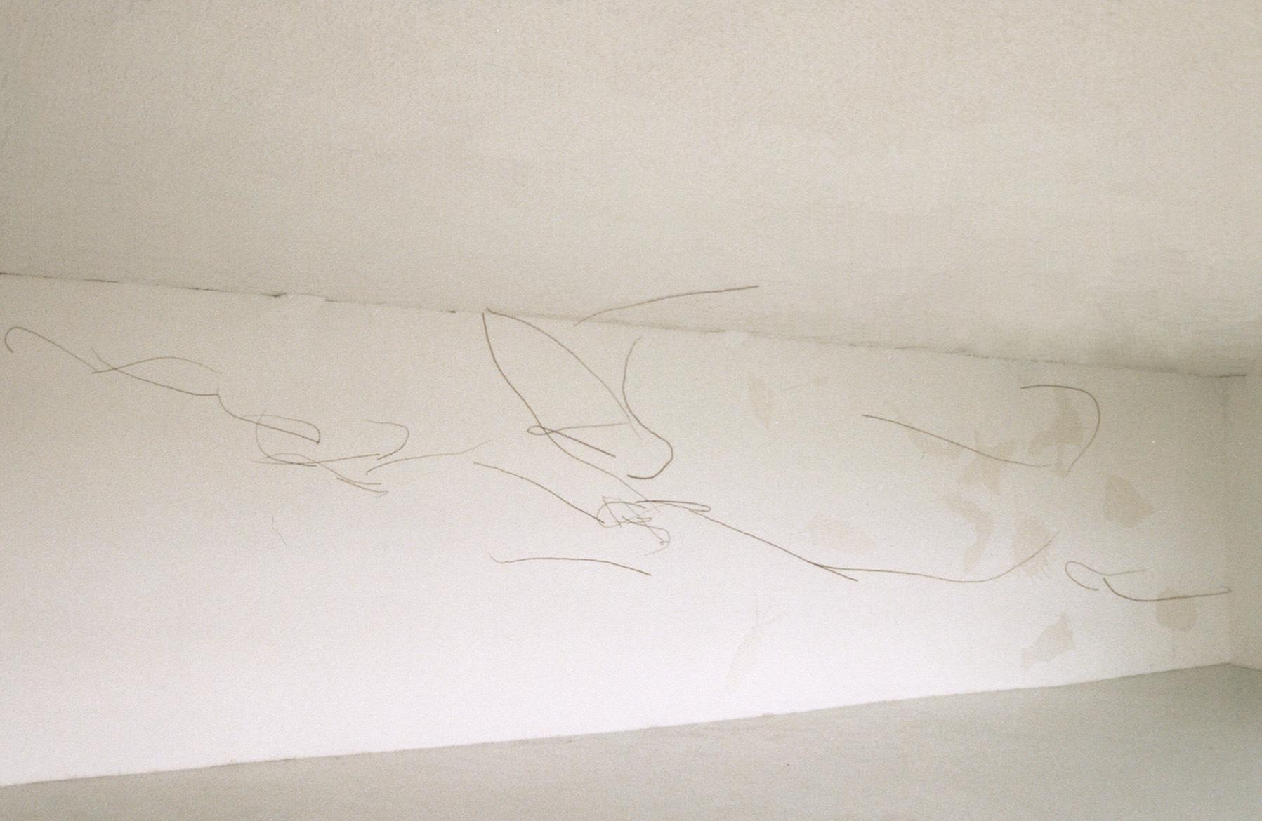 <i>dessillement 1</i>, 2004,  dessin/installation, tiges de jeune saule, 200x400x300cm