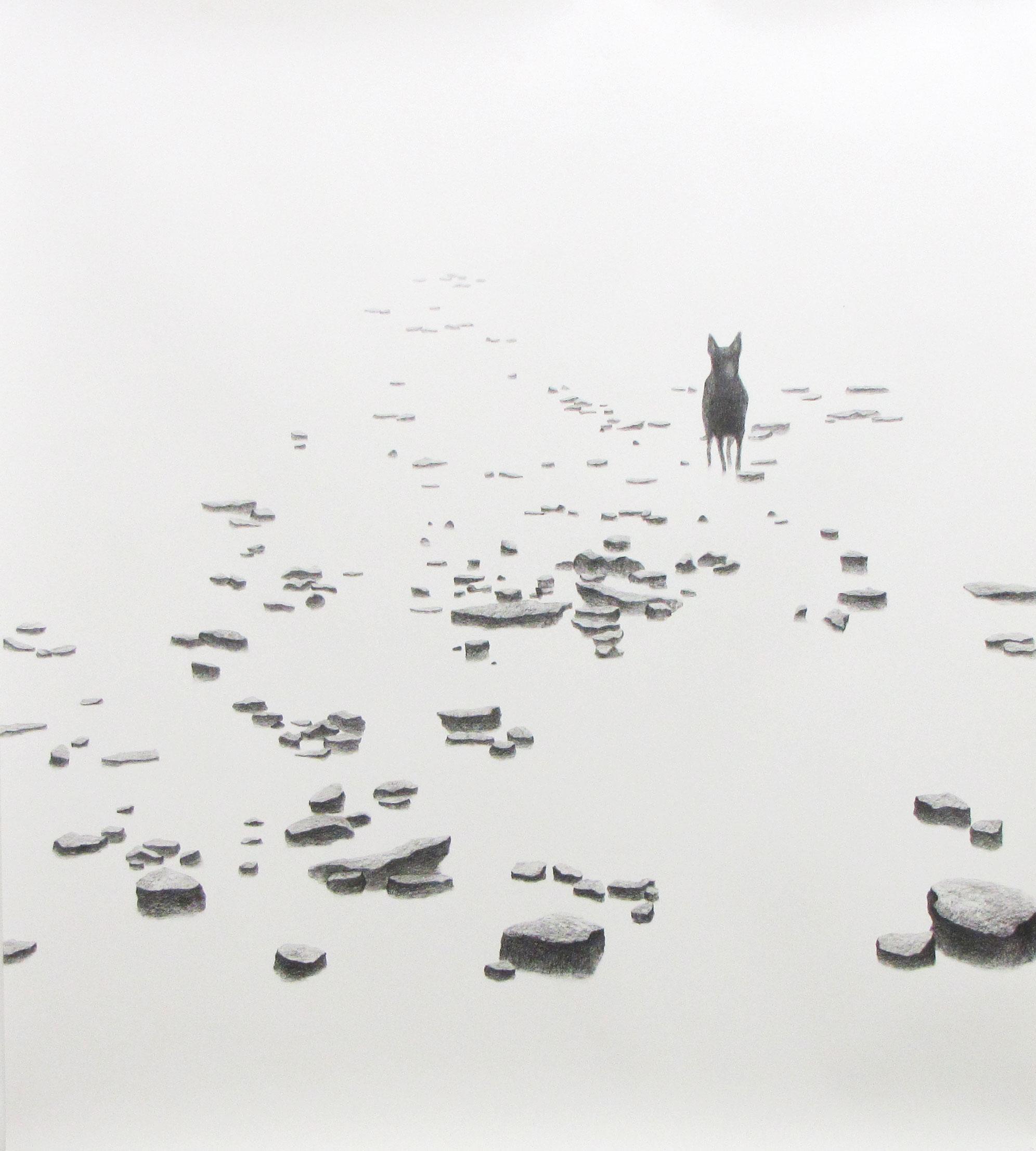 <i>stalker</i>, 2009, graphite, 160x150cm