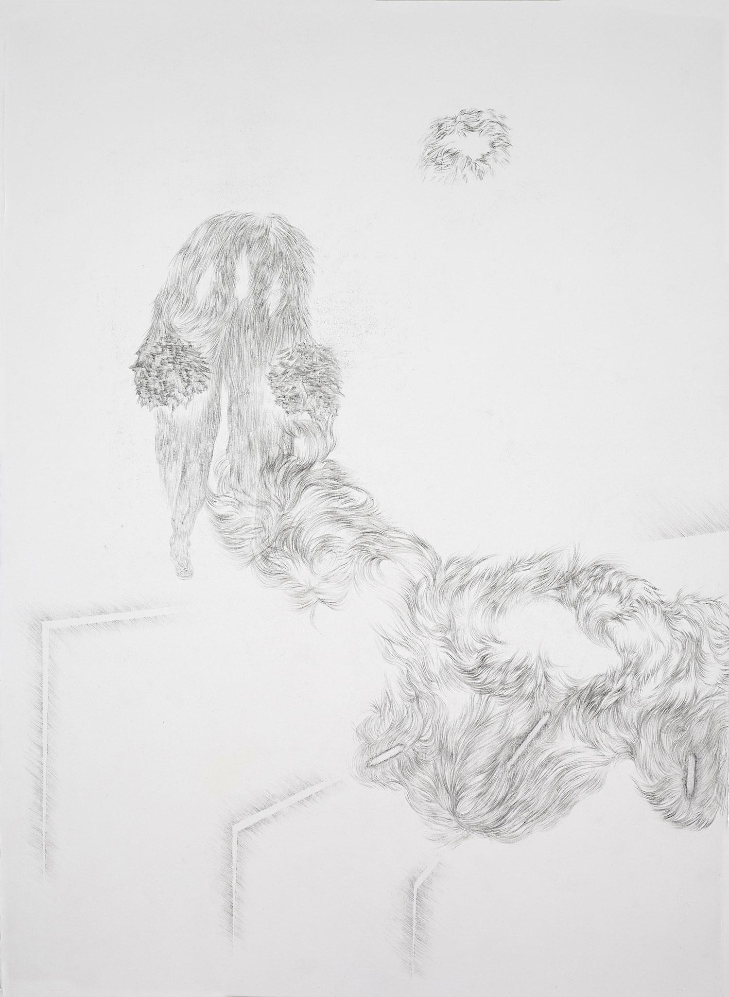 <i>traversée</i>, 2014, graphite, 76x56cm