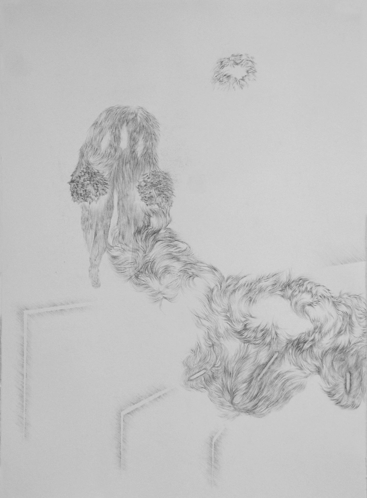 <i>Traversée</i>, 2014, graphite, 80x60cm