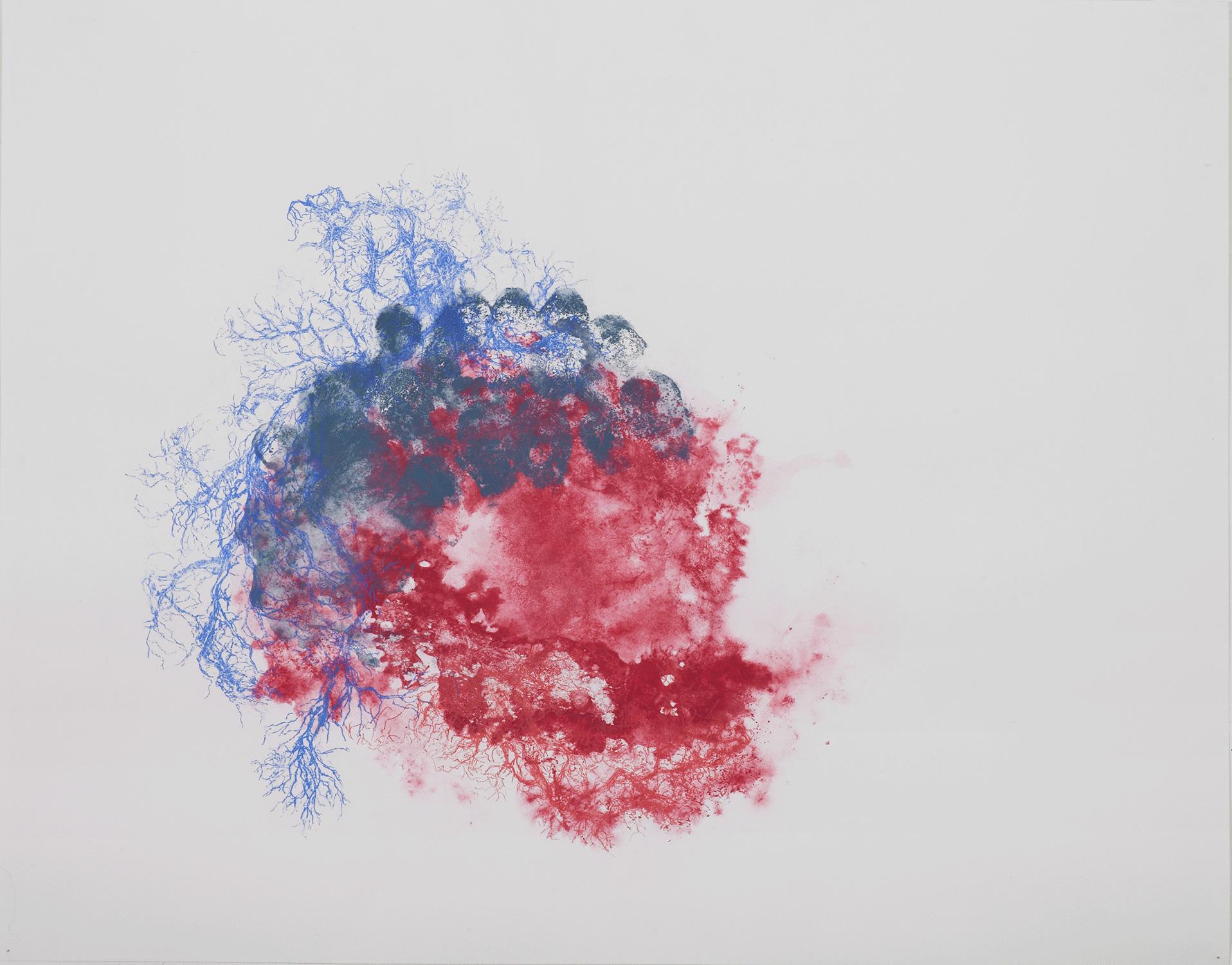 <i>Vanité</i>, 2013, encre et crayon, 60x80cm