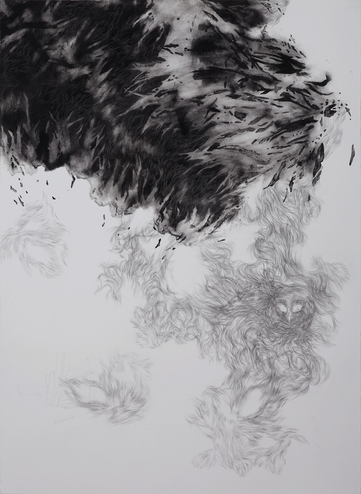 <i>Vol nocturne</i>, 2014, graphite et gouache, 80x60cm