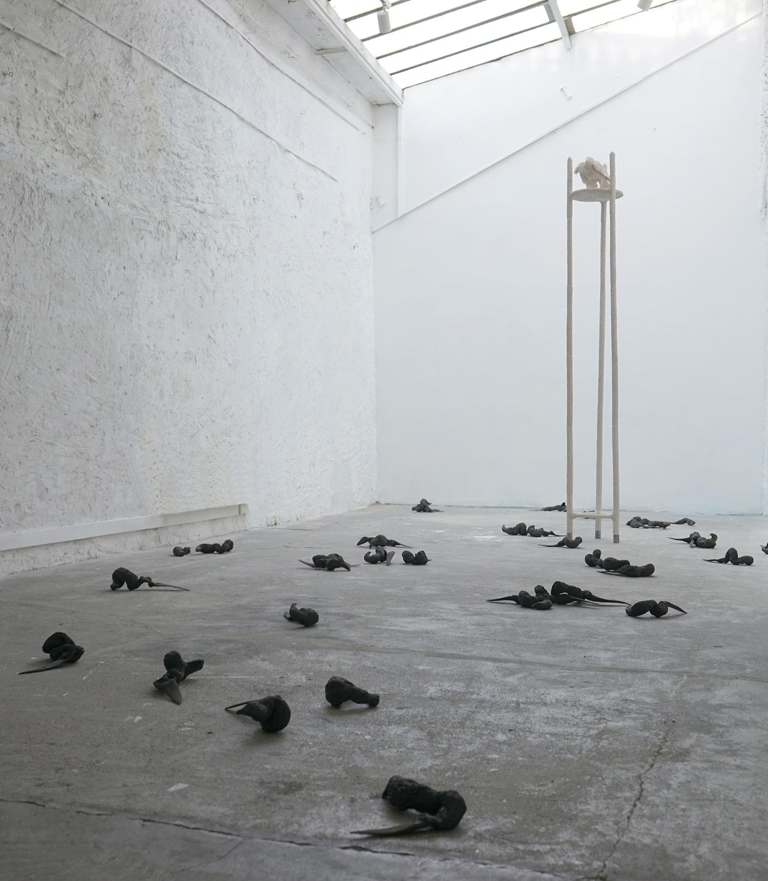 exposition <i>Sous l'ombre portée<i> à l'Espace Larith,Chambery,  2018