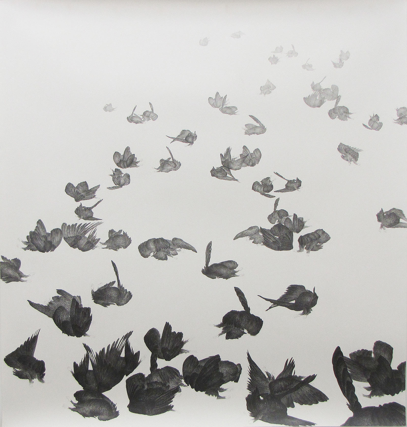 <i>Zone affectée</i>, 2009, graphite, 160x150cm